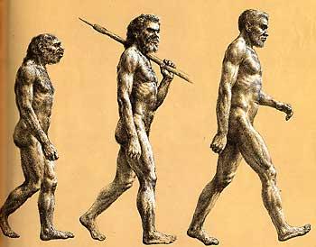 NeanderthalVsSapiens